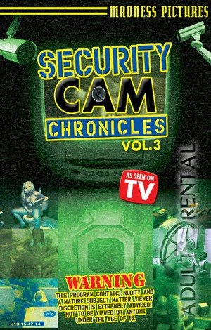 Security Cam Chronicles 3 Porn Video Art
