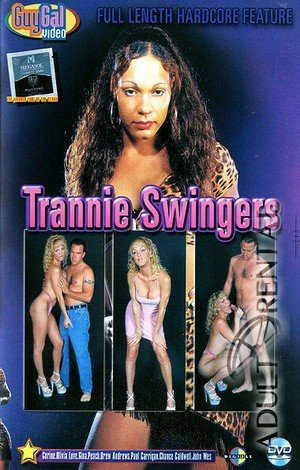 Trannie Swingers Porn Video Art