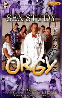 Sex Study Orgy | Adult Rental