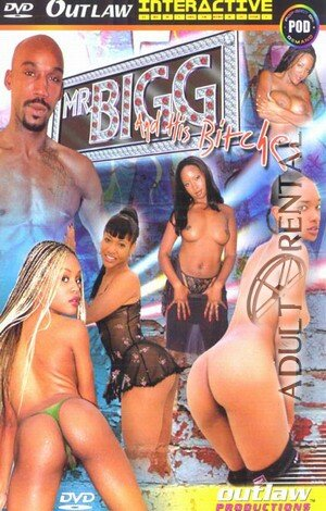 Mr. Bigg And His Bitches Porn Video Art