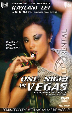 One Night In Vegas Porn Video Art