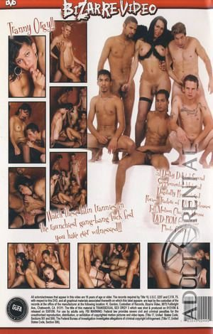 Transsexual Sex Orgy 3 Porn Video Art