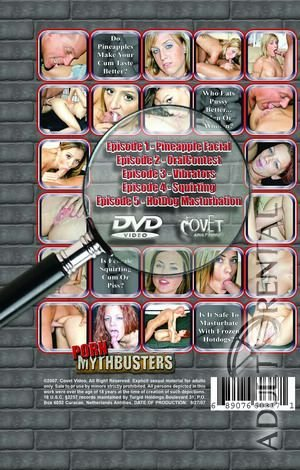 Porn Mythbusters Porn Video Art