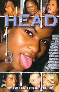 Head 3 | Adult Rental