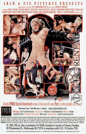 The Surrender of O Porn Video Art