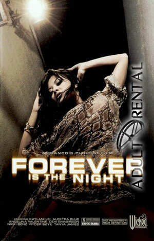 Forever Is The Night Porn Video Art