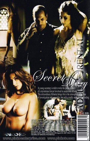 Secret Diary Porn Video Art