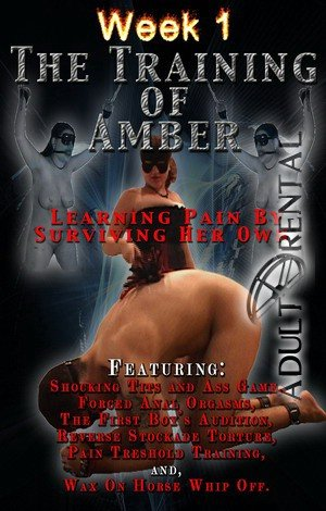 The Training Of Amber Week 1: Disc 2 Porn Video