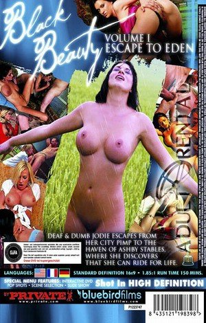 Black Beauty Porn Video Art