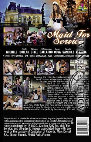 Maid For Service Porn Video Art