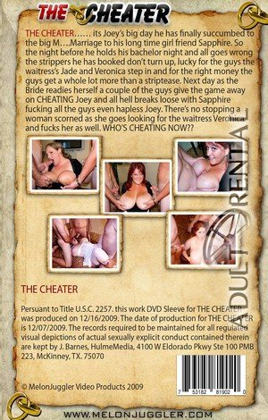 The Cheater Porn Video Art