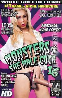 Monsters Of She Male Cock 16 | Adult Rental