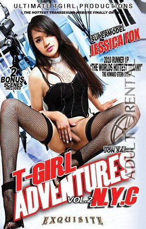 T-Girl Adventures NYC 2 Porn Video Art