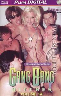 Gang Bang Bitches 14 | Adult Rental