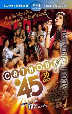 Cathouse 45 Porn Video Art