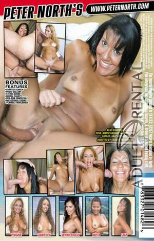 Latina Fever 12 Porn Video Art
