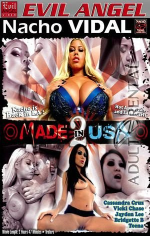 Made In USA 2 Porn Video Art