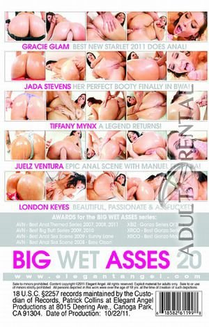 Big Wet Asses 20 Porn Video Art