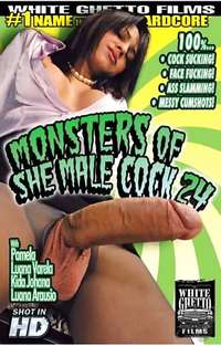 Monsters Of Shemale Cock 24 | Adult Rental