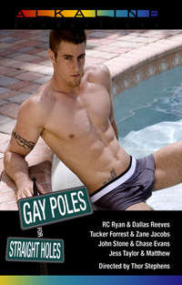 Gay Poles For Straight Holes | Adult Rental