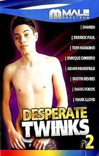 Desperate Twinks # 2 | Adult Rental