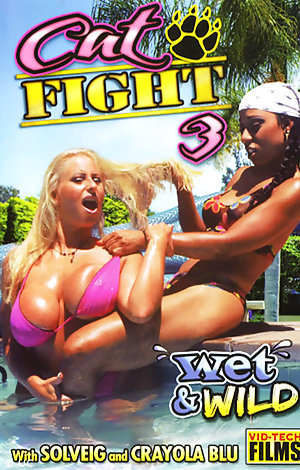 Cat Fight # 3: Wet & Wild Porn Video Art