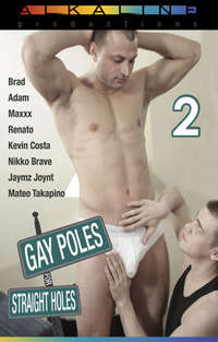 Gay Poles For Straight Holes # 2