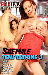 Shemale Temptations #3 | Adult Rental