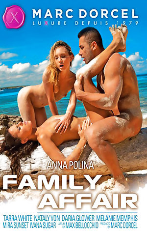 Family Affair  Porn Video Art