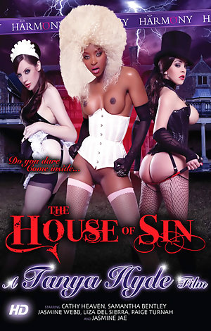 The House Of Sin Porn Video Art
