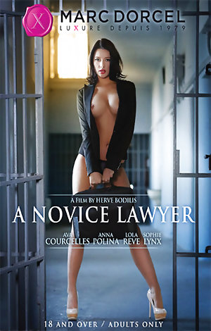 A Novice Lawyer Porn Video Art