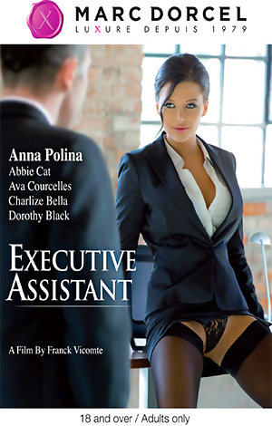 Executive Assistant Porn Video Art