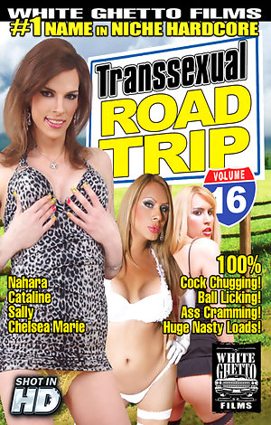 Transsexual Road Trip #16 Porn Video Art