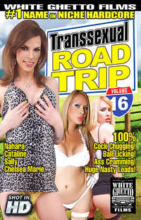 Transsexual Road Trip #16 | Adult Rental