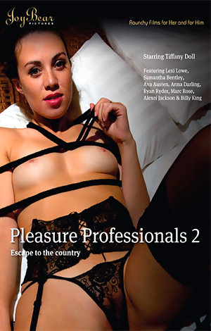 Pleasure Professionals #2  Porn Video Art