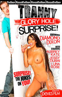 Tranny Glory Hole Surprise | Adult Rental