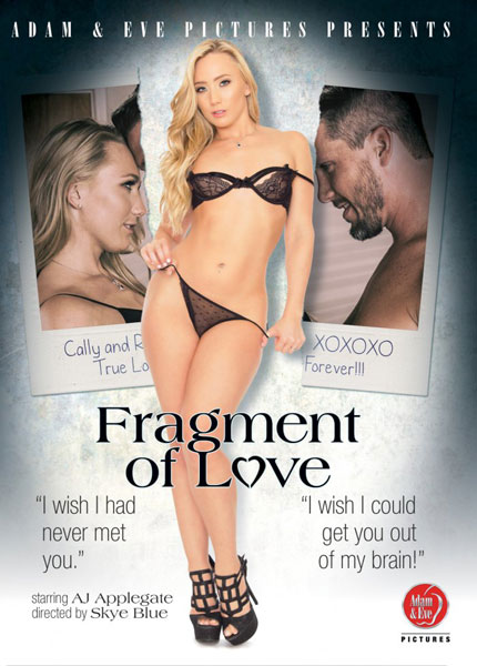 Fragment of Love Porn Video Art