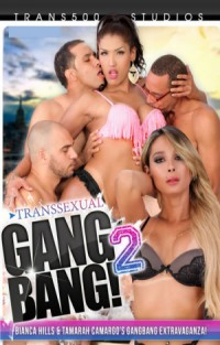 Transsexual Gangbang #2 | Adult Rental