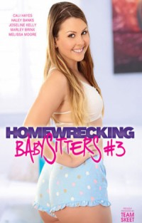 Homewrecking Babysitters #3