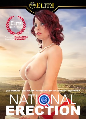 National Erection Porn Video Art