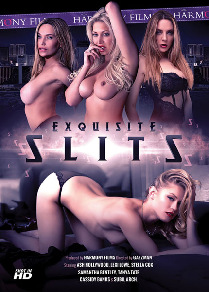 Exquisite Slits Porn Video Art