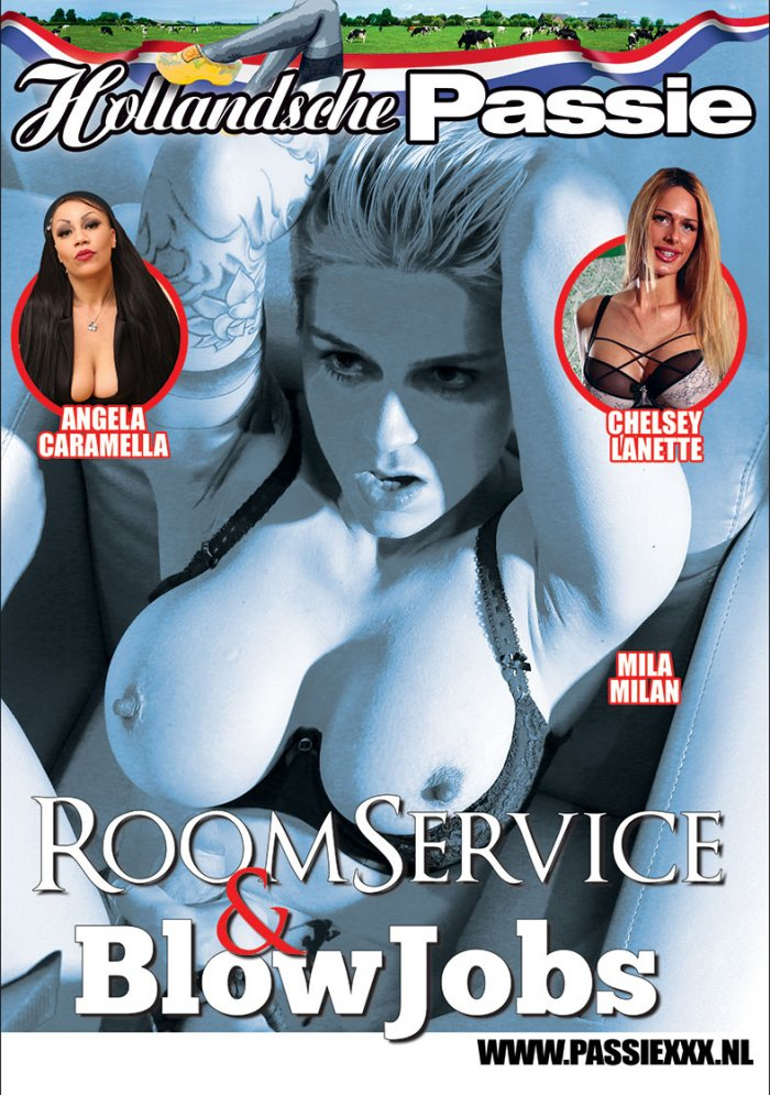Room Service and Blowjobs Porn Video Art