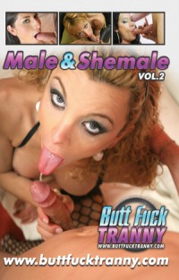 Male And Shemale 2 4 | Adult Rental