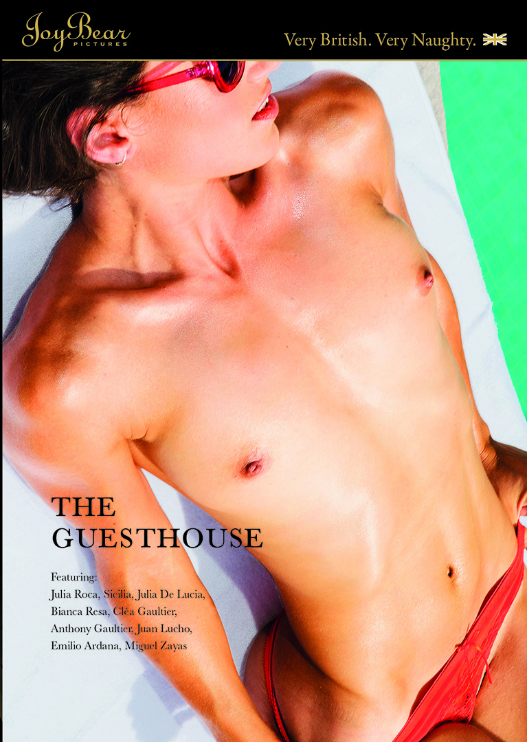 THE GUESTHOUSE Porn Video Art