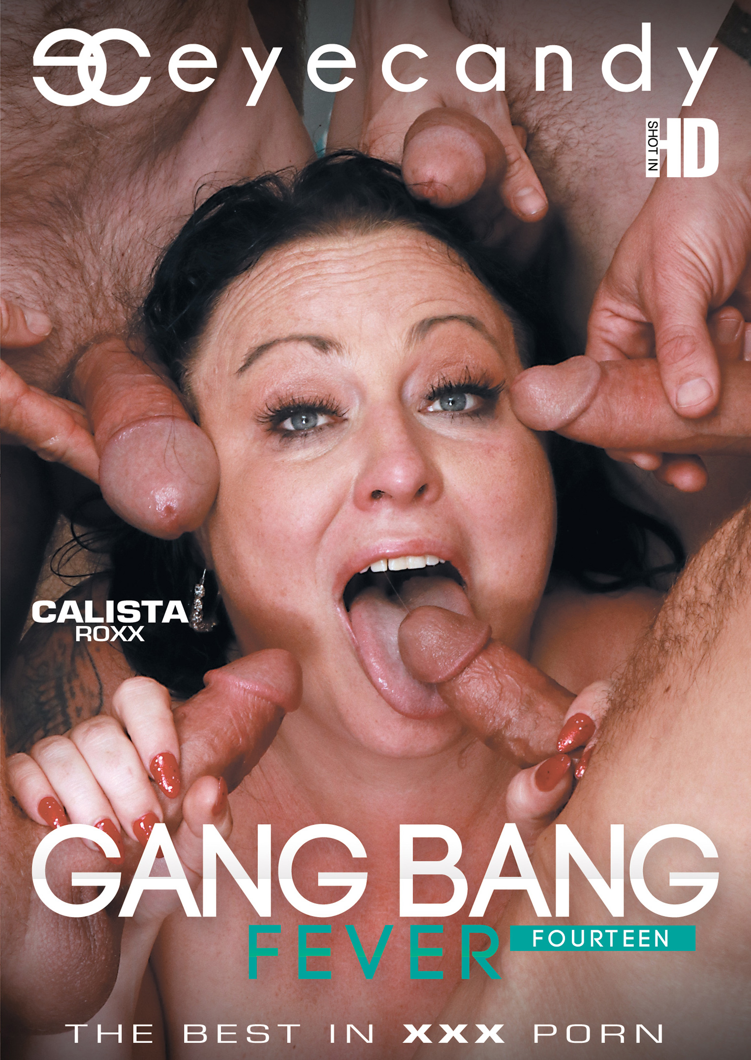 Gang Bang Fever 14 Porn Video Art