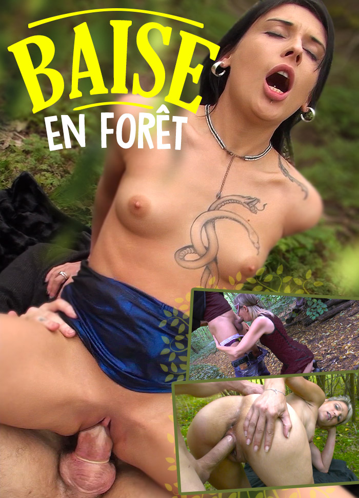 Baise En Foret Porn Video Art